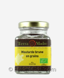 Moutarde-brune-en-grain-terra-madre